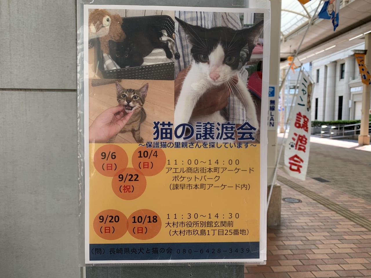 条件 引き取り 保健所 猫 保健所で犬を引き取りする条件は?高齢者や初心者、室外で飼うのは?